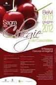 SAGRA DELLE CILIEGIE – BELVI – 8-10 GIUGNO