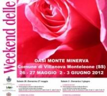 WEEKEND DELLE ROSE – VILLANOVA MONTELEONE – 2-3 GIUGNO