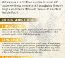 MALVASIA FESTIVAL – SETTIMO SAN PIETRO – SATURDAY OCTOBER 27
