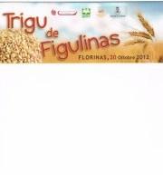 TRIGU DE FIGULINAS – FLORINAS – SABATO 20 OTTOBRE