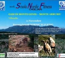 PASSEGGIATA DI NORDIC WALKING – VILLASALTO – DOMENICA 11 NOVEMBRE