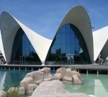 <!--:it-->VISITA L'OCEANOGRAFICO DI VALENCIA A SOLI 10 €<!--:--><!--:en-->VISIT OCEANOGRAFIC VALENCIA TICKETS ONLY 10 € <!--:-->