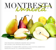 <!--:it-->MONTRESTA INNESTA – MONTRESTA – DOMENICA 17 MARZO<!--:--><!--:en-->MONTRESTA INNESTA – MONTRESTA – SUNDAY MARCH 17<!--:-->