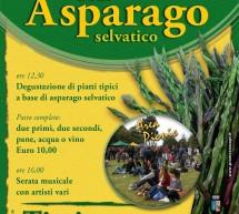 <!--:it-->9°EDIZIONE DELLA SAGRA DELL'ASPARAGO SELVATICO – TISSI – GIOVEDI 25 APRILE<!--:--><!--:en-->9th WILD ASPARAGUS FESTIVAL – TISSI – THURSDAY AVRIL 25<!--:-->