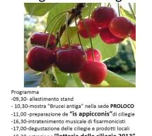 <!--:it-->SAGRA DELLE CILIEGIE 2013 – BURCEI – DOMENICA 2 GIUGNO<!--:--><!--:en-->CHERRY FESTIVAL 2013 – BURCEI – SUNDAY JUNE 2<!--:-->