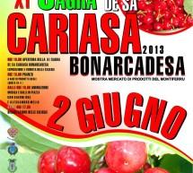 <!--:it-->11° SAGRA DE SA CARIASA BONARCADESA – BONARCARDO – DOMENICA 2 GIUGNO<!--:--><!--:en-->CHERRY FESTIVAL – BONARCADO – SUNDAY JUNE 2<!--:-->