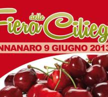 <!--:it-->FIERA DELLE CILIEGIE – BONNANNARO – DOMENICA 9 GIUGNO<!--:--><!--:en-->CHERRY FESTIVAL – BONNANNARO – SUNDAY JUNE 9th<!--:-->