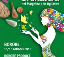 <!--:it-->PRIMAVERA IN OGLIASTRA 2013 – BORORE – 15-16 GIUGNO 2013<!--:--><!--:en-->SPRING IN OGLIASTRA 2013 – BORORE – JUNE 15th TO 16th<!--:-->