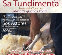 <!--:it-->SA TUNDIMENTA 2013 – FONNI – SABATO 22 GIUGNO<!--:--><!--:en-->SA TUNDIMENTA 2013 – FONNI – SATURDAY JUNE 22th<!--:-->