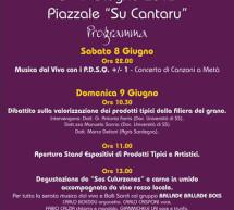 <!--:it-->SAGRA DE SOS CULURZONES – GHILARZA – 8-9 GIUGNO<!--:--><!--:en-->SOS CULURZONES FESTIVAL – GHILARZA – JUNE 8 TO 9th<!--:-->