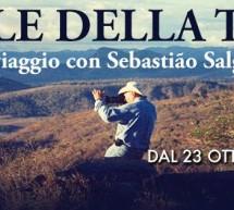 <!--:it-->PROGRAMMAZIONE CINEMA GREENWICH D'ESSAI – CAGLIARI – 6-12 NOVEMBRE 2014<!--:--><!--:en-->PROGRAMMING CINEMA GREENWICH D'ESSAI – CAGLIARI – NOVEMBER 6 TO 12,,2014<!--:-->