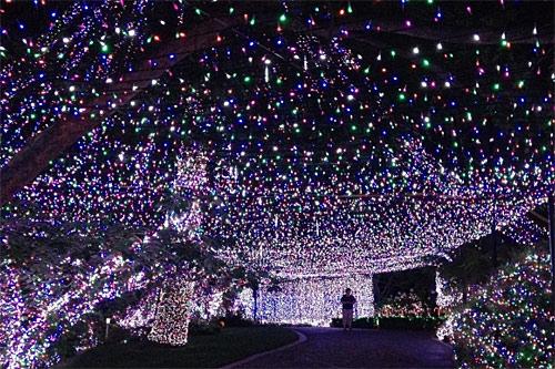Immagini Luci Di Natale.Dall 8 Dicembre Si Accendono Le Luci Di Natale A Cagliari