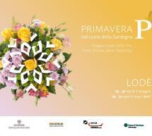 PRIMAVERA IN OGLIASTRA – LODE' – 29-30 APRILE – 1 MAGGIO 2017