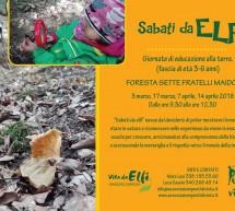 SABATO DA ELFI – FORESTA SETTE FRATELLI MAIDOPIS – 3-17 MARZO; 7-14 APRILE 2018