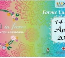 TORTOLI' IN FIORE – TORTOLI -14-15 APRILE 2018