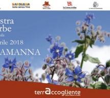 34° MOSTRA DELLE ERBE & SAGRA DE SA PARDULA – USSARAMANNA – 28-29 APRILE 2018