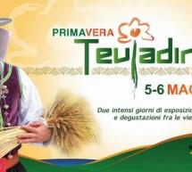 PRIMAVERA TEULADINA – TEULADA – 5-6 MAGGIO 2018
