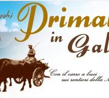 PRIMAVERA IN GALLURA – STAZZI E CUSSOGGHJ – CALENDARIO COMPLETO -26 MAGGIO – 1 LUGLIO 2018