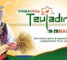PRIMAVERA TEULADINA – TEULADA – 19-20 MAGGIO 2018