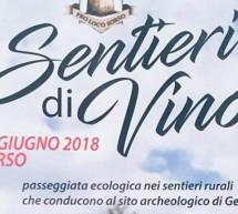 SENTIERI DI VINO -SORSO – SABATO 16 GIUGNO 2018