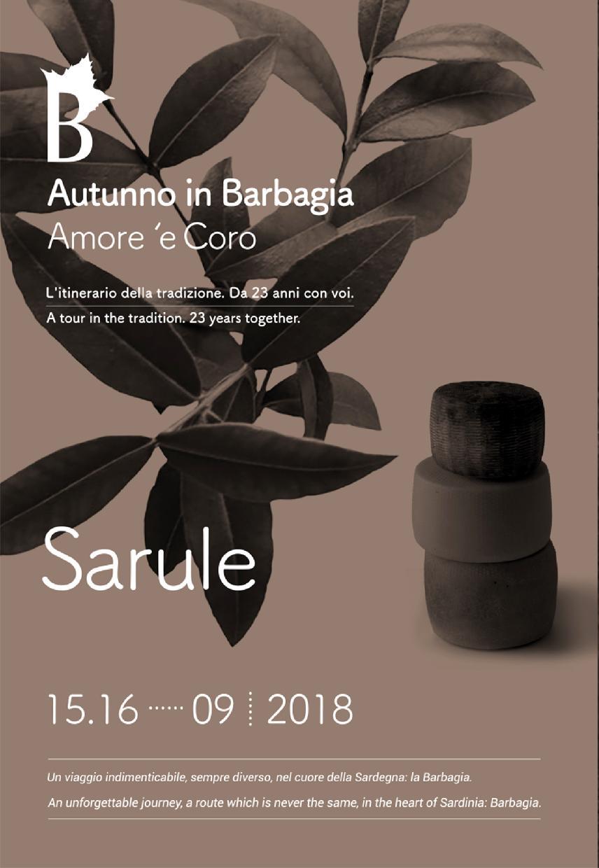 AiB2018-brochure-web-sarule-page-001