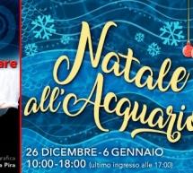 NATALE ALL'ACQUARIO DI CALA GONONE – 26 DICEMBRE- 6 GENNAIO 2019