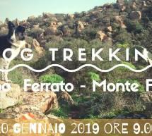 DOG TREKKING CAPO FERRATO-MONTE FERRU – DOMENICA 20 GENNAIO 2019