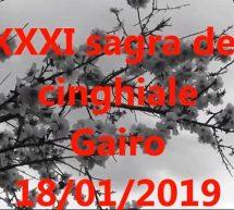 FUOCHI DI SANT'ANTONIO e SAGRA DEL CINGHIALE – GAIRO – VENERDI 18 GENNAIO 2019
