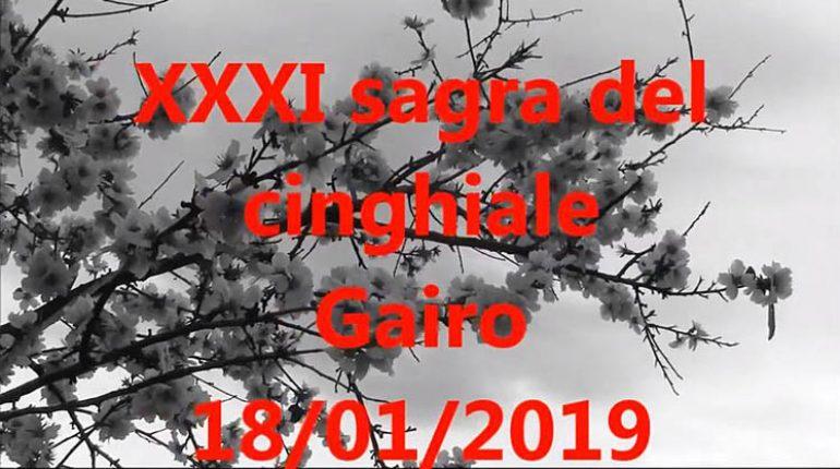 sagra-cinghiale-gairo-manifesto-2019-770x430