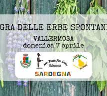SAGRA DELLE ERBE SPONTANEE – VALLERMOSA – DOMENICA 7 APRILE 2019