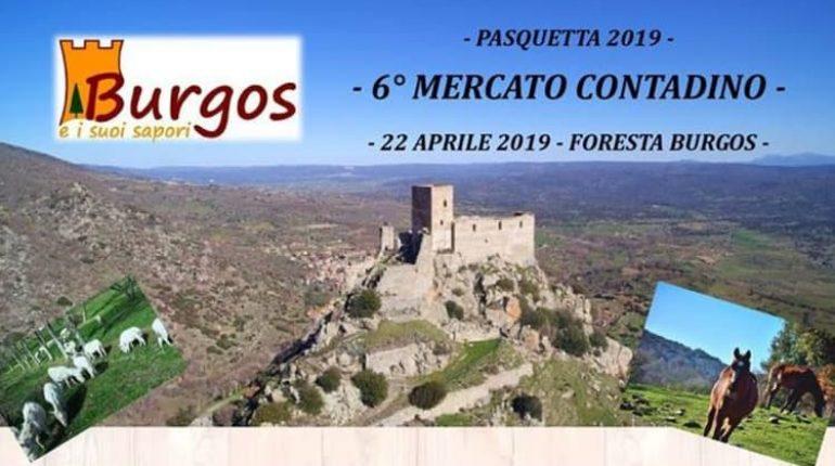 pasquetta-burgos-manifesto-2019-770x430