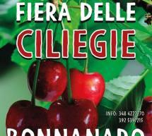 FIERA DELLE CILIEGIE – BONNANNARO – DOMENICA 2 GIUGNO 2019