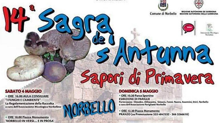 sagra-antunna-norbello-manifesto-2019-770x430