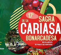 17° SAGRA DELLE CILIEGIE – BONARCADO – DOMENICA 2  GIUGNO 2019
