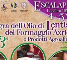 SAGRA DELL'OLIO DI LENTISCHIO E DEL FORMAGGIO AXRIDDA- ESCALAPLANO -4-5 MAGGIO 2019