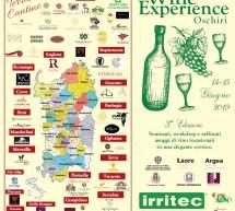 OSCHIRI WINE EXPERIENCE – OSCHIRI – 15-16 GIUGNO 2019