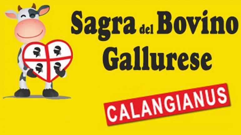 sagra-bovino-gallurese-manifesto-770x430