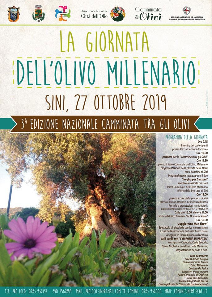 sini_giornata_olivo_millenario